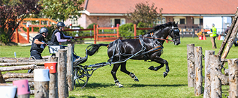 British Carriagedriving names team for World Single Championship