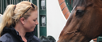 British Equestrian's Young Professionals Programme welcomes new cohort of aspiring equestrian entrepreneurs